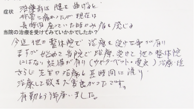 voice10_asami